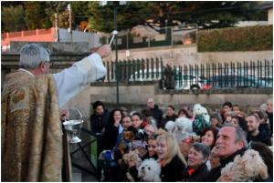 La Parroquia de La Soledad acoge la tradicional bendición de las mascotas por San Antón